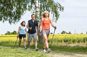 скандинавская ходьба для начинающих, фото