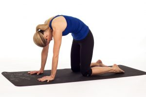 комплекс упражнений для спины, поза кошки, картинка