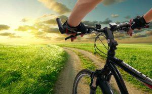 польза езды на велосипеде, картинка