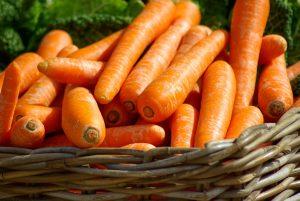 чем полезна морковь для организма, картинка
