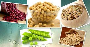 продукты с фитоэстрогенами, картинка